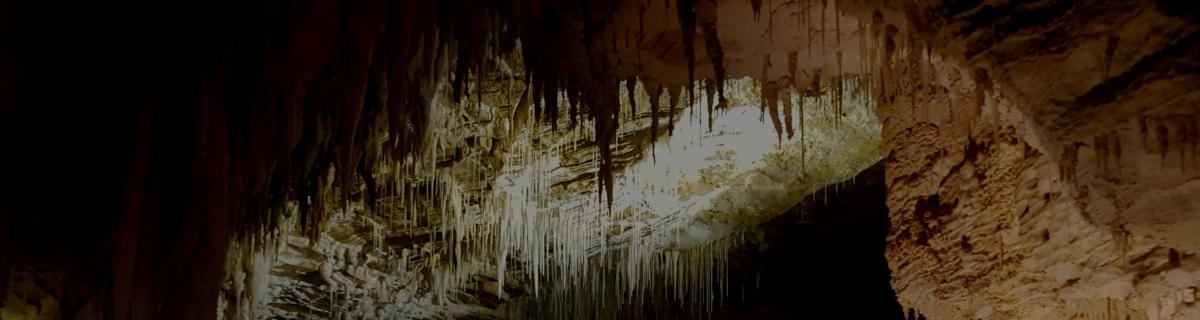 Waitomo Glow Worm & Ruakuri Caves
