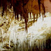 Family Travel Waitomo Caves New Zealand